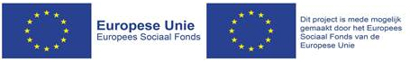 Europese Unie sociaal fonds